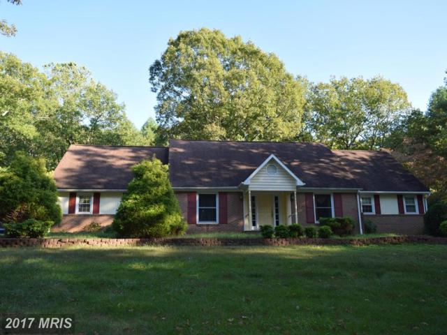 16361 Lake Front Court, Culpeper, VA 22701 (#CU10084003) :: Network Realty Group