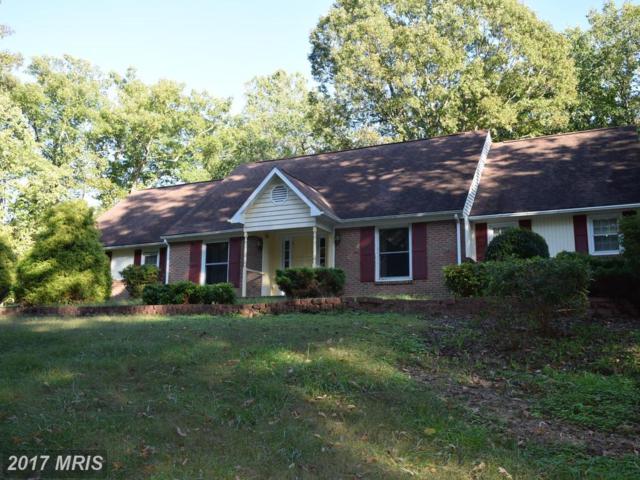 16361 Lake Front Court, Culpeper, VA 22701 (#CU10084003) :: Circadian Realty Group