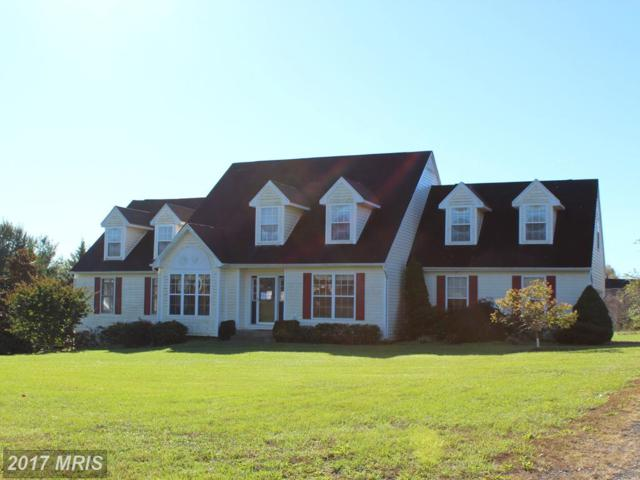 13250 Windmill Way, Culpeper, VA 22701 (#CU10091603) :: Pearson Smith Realty