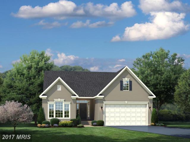 0014 Virginia Avenue, Culpeper, VA 22701 (#CU10097129) :: Pearson Smith Realty