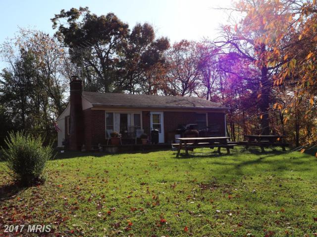 14220 Chestnut Fork, Culpeper, VA 22701 (#CU10098048) :: Pearson Smith Realty