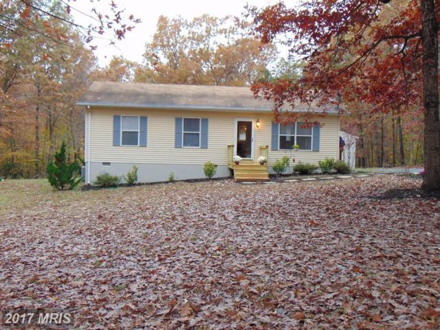 22420 Burwell Street, Richardsville, VA 22736 (#CU10100078) :: Pearson Smith Realty