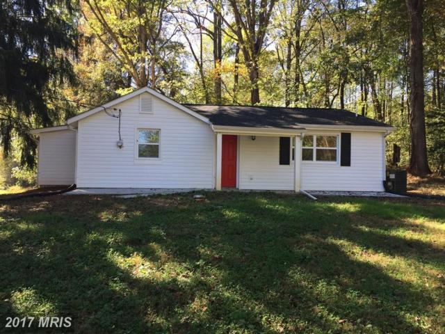 5204 Rixeyville Road, Jeffersonton, VA 22724 (#CU10105800) :: The Nemerow Team