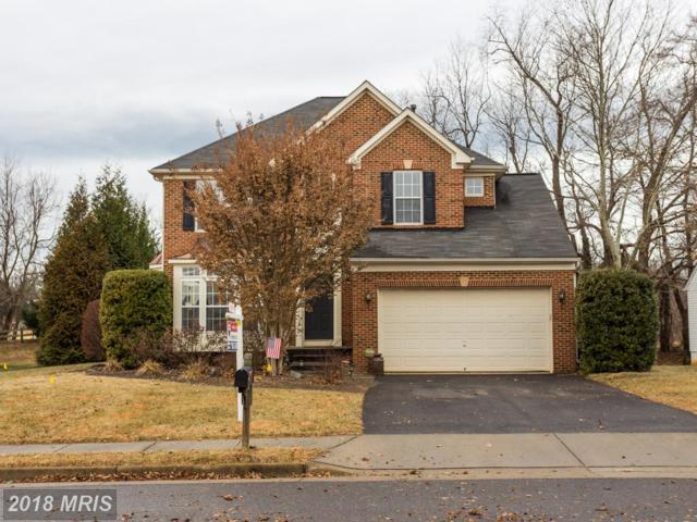 906 Riverdale Circle, Culpeper, VA 22701 (#CU10133704) :: The Hagarty Real Estate Team