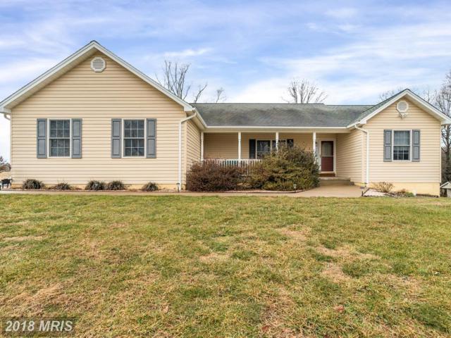15103 Jenkins Hill Lane, Culpeper, VA 22701 (#CU10134152) :: The Hagarty Real Estate Team