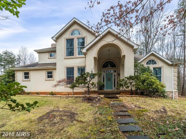 8129 Tinsley Place, Culpeper, VA 22701 (#CU10134397) :: The Hagarty Real Estate Team
