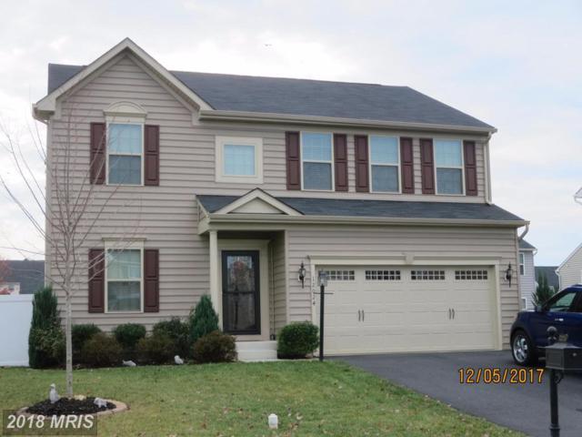 12024 Live Oak Drive, Culpeper, VA 22701 (#CU10134842) :: The Hagarty Real Estate Team