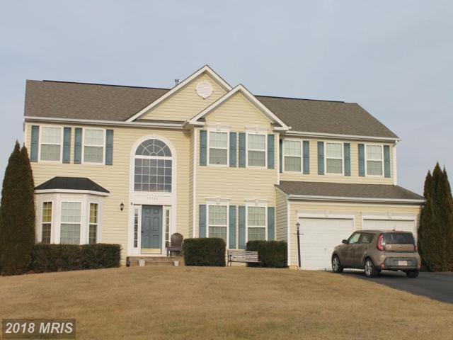 13104 Belle Grove Court, Culpeper, VA 22701 (#CU10136174) :: AJ Team Realty