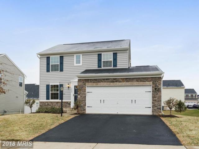 12229 Salt Cedar Lane, Culpeper, VA 22701 (#CU10151303) :: Advance Realty Bel Air, Inc