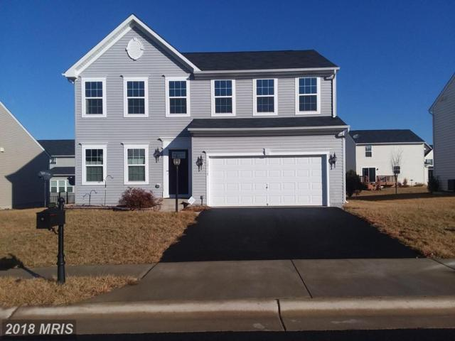 12117 Majestic Place, Culpeper, VA 22701 (#CU10156623) :: Advance Realty Bel Air, Inc