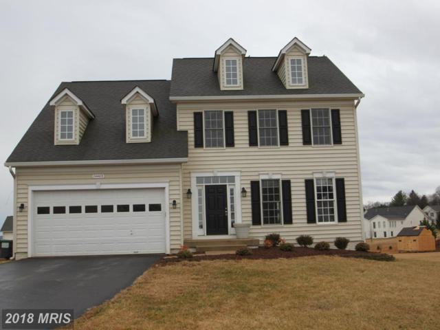 14403 Lee Hall Court, Culpeper, VA 22701 (#CU10158762) :: AJ Team Realty