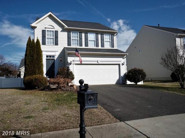 12307 Osprey Lane, Culpeper, VA 22701 (#CU10162089) :: Network Realty Group