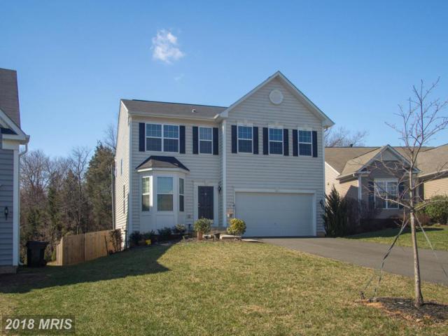 613 Hunters Road, Culpeper, VA 22701 (MLS #CU10179156) :: Explore Realty Group