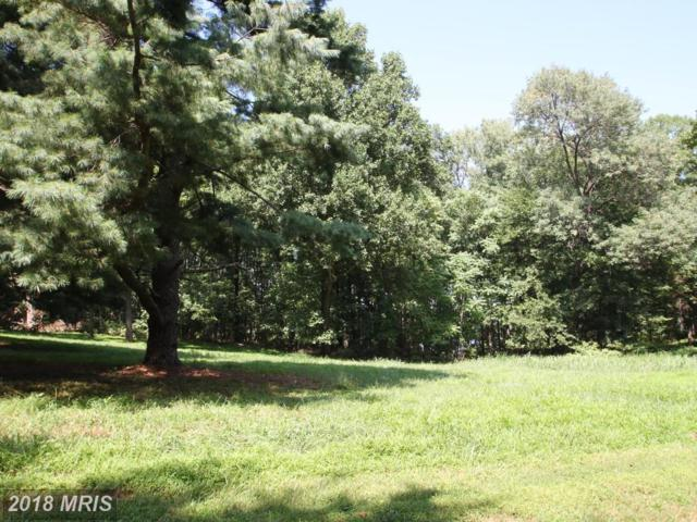 Zeuswyn Drive, Culpeper, VA 22701 (#CU10184849) :: CR of Maryland