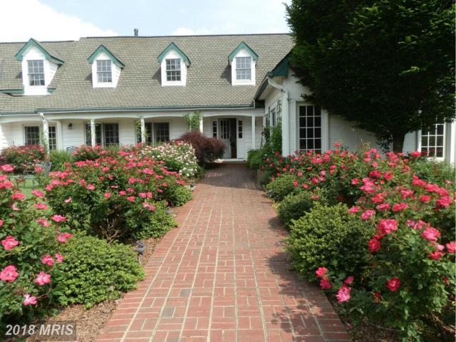 13310 Del Dios Way, Culpeper, VA 22701 (#CU10188012) :: Blackwell Real Estate