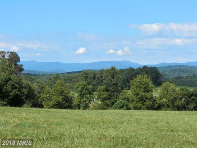 8780 Old Stillhouse Road, Rixeyville, VA 22737 (#CU10205809) :: The Bob & Ronna Group