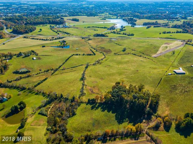 Clark Meadow Lane, Culpeper, VA 22701 (#CU10214110) :: The Bob & Ronna Group