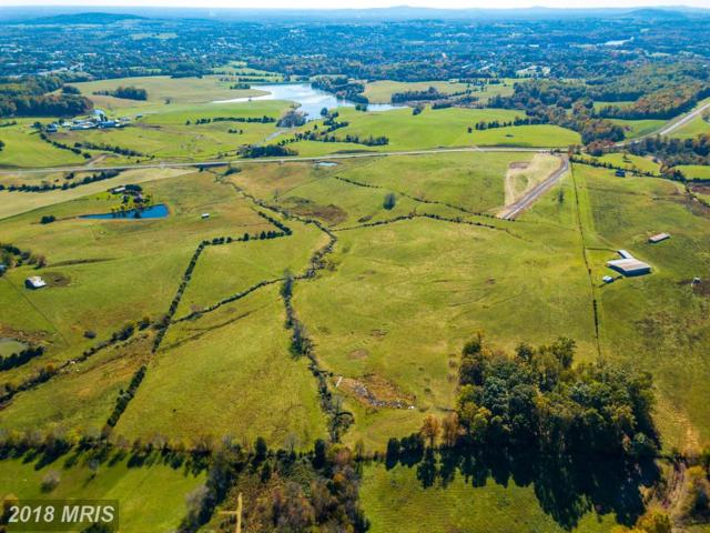 Clark Meadow Lane, Culpeper, VA 22701 (#CU10214157) :: AJ Team Realty