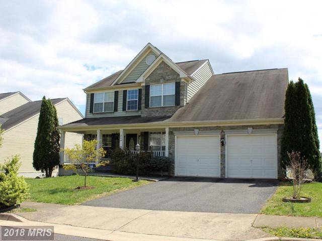 804 Fairwood Drive, Culpeper, VA 22701 (#CU10214248) :: The Nemerow Team