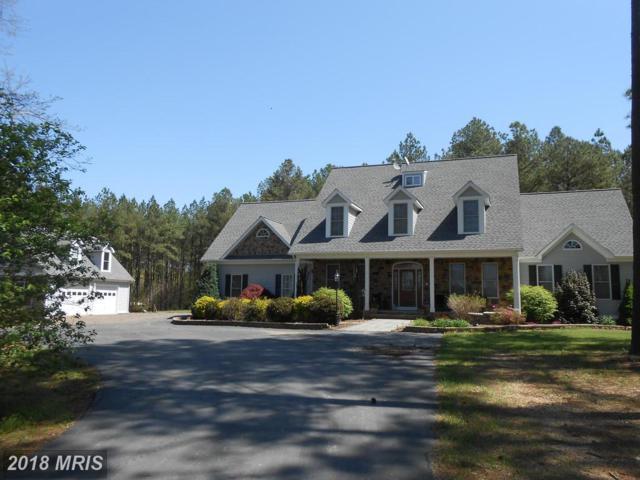 17241 Corder Road, Elkwood, VA 22718 (#CU10226327) :: RE/MAX Cornerstone Realty