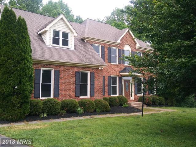 3155 Southampton Drive, Jeffersonton, VA 22724 (#CU10240031) :: RE/MAX Cornerstone Realty