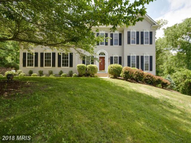 3410 Stratford Drive, Jeffersonton, VA 22724 (#CU10249610) :: RE/MAX Cornerstone Realty