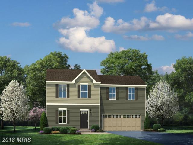 0010 Crepe Myrtle Lane, Culpeper, VA 22701 (#CU10250656) :: Colgan Real Estate