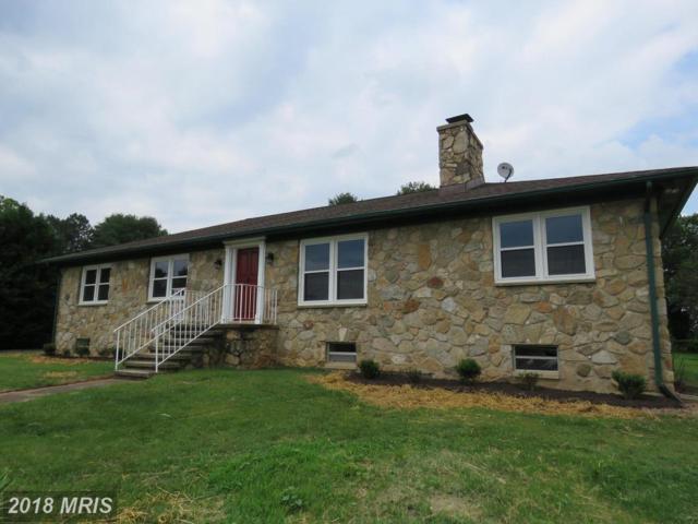 11121 Mountain Run Lake Road, Culpeper, VA 22701 (#CU10273174) :: Browning Homes Group