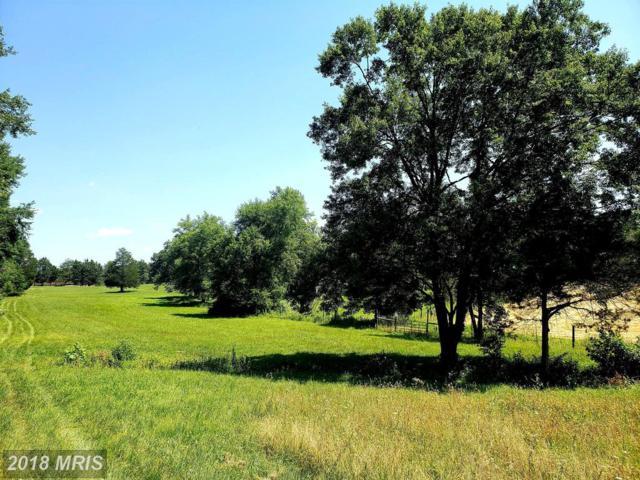 Lanes Farm Lane, Culpeper, VA 22701 (#CU10297977) :: Network Realty Group