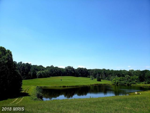 Lanes Farm Lane, Culpeper, VA 22701 (#CU10297993) :: Network Realty Group