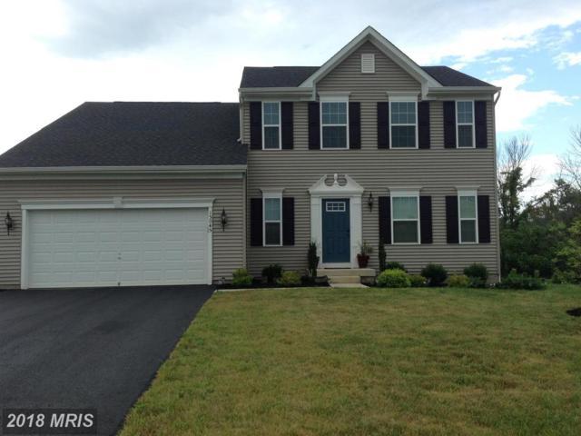 15045 North Ridge Boulevard, Culpeper, VA 22701 (#CU10300785) :: Gray Realty Group