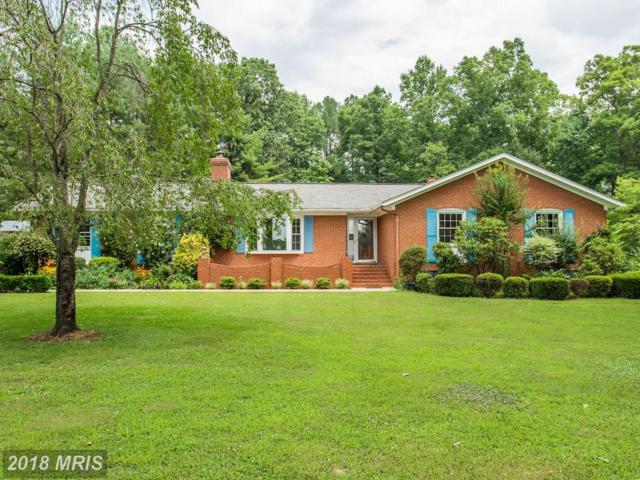 6591 Waterford Road, Rixeyville, VA 22737 (#CU10301112) :: The Nemerow Team