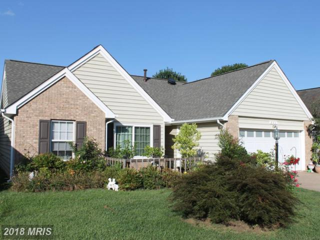 803 Ripplebrook Drive, Culpeper, VA 22701 (#CU10344797) :: Network Realty Group
