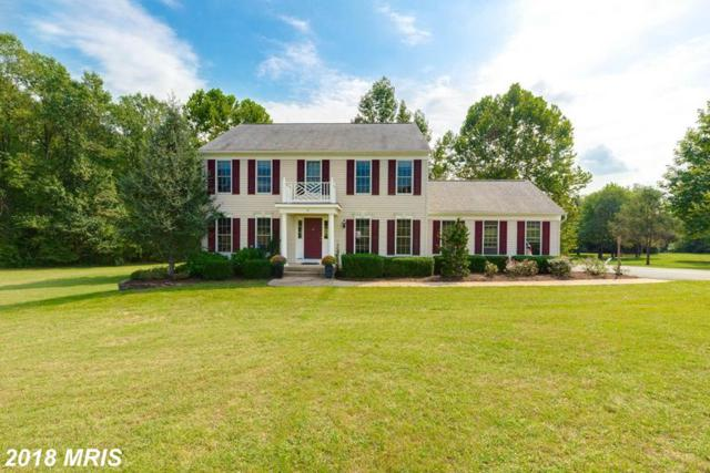 16133 Bellevue Drive, Culpeper, VA 22701 (#CU10352786) :: Network Realty Group