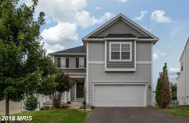 2079 Cranberry Lane, Culpeper, VA 22701 (#CU10353169) :: Network Realty Group
