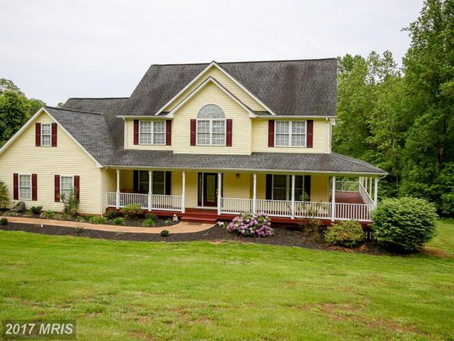 4382 Deer Lane, Boston, VA 22713 (#CU9664707) :: Pearson Smith Realty