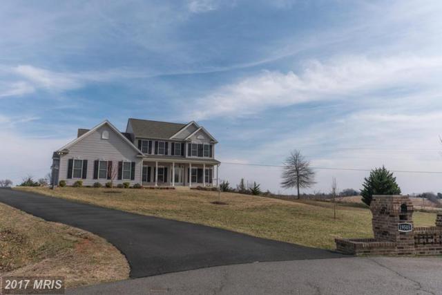 19505 Meadowvale Court, Culpeper, VA 22701 (#CU9869512) :: LoCoMusings