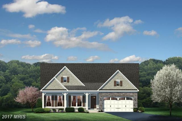 03 North Ridge Boulevard, Culpeper, VA 22701 (#CU9893899) :: LoCoMusings