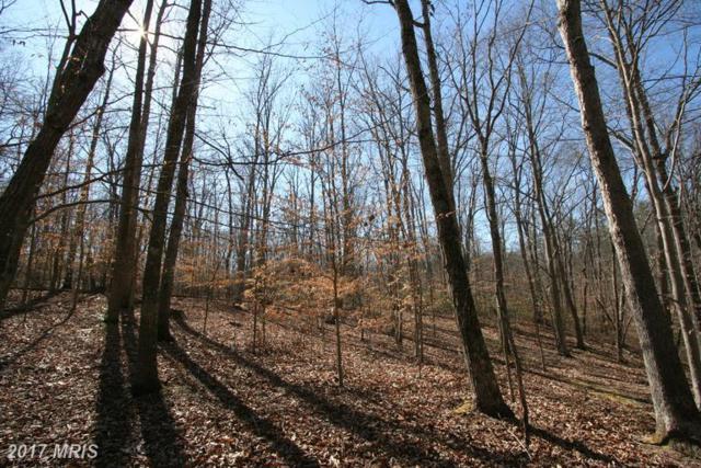 Peaceful Place, Amissville, VA 20106 (#CU9896708) :: LoCoMusings