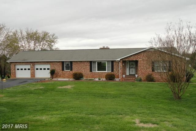 20397 Miller Drive, Culpeper, VA 22701 (#CU9905301) :: LoCoMusings