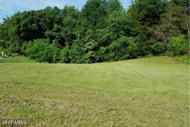 128 Wayland Manor Drive, Culpeper, VA 22701 (#CU9906675) :: LoCoMusings