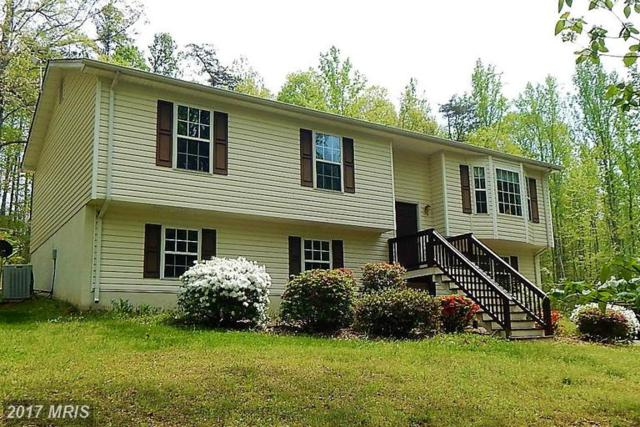 8450 Curling Creek Lane, Rixeyville, VA 22737 (#CU9931313) :: LoCoMusings