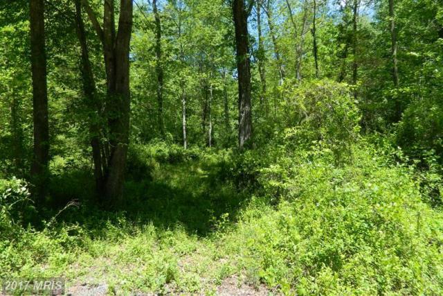 Deerfield Lane, Jeffersonton, VA 22724 (#CU9938787) :: LoCoMusings