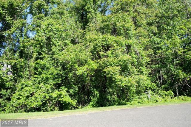 Pond View Court, Culpeper, VA 22701 (#CU9955660) :: LoCoMusings