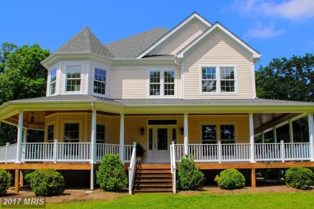 13545 Eggbornsville Road, Culpeper, VA 22701 (#CU9963453) :: LoCoMusings