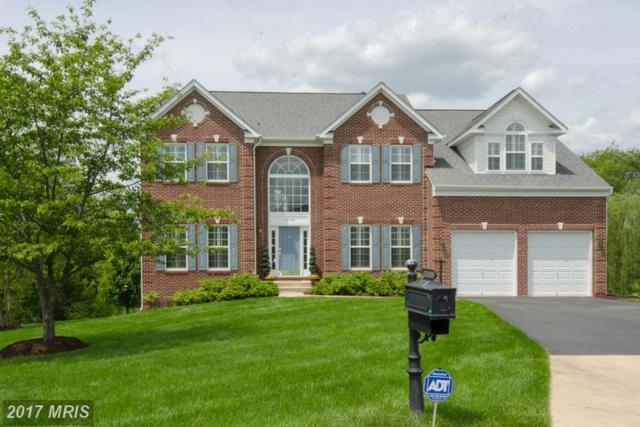 13108 Belle Grove Court, Culpeper, VA 22701 (#CU9964381) :: LoCoMusings
