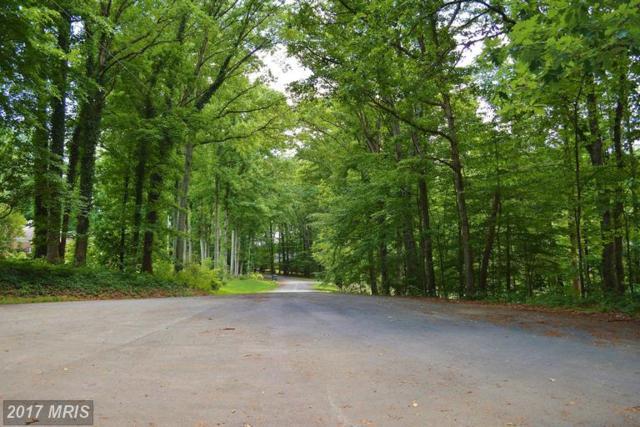 White Pine Lane, Culpeper, VA 22701 (#CU9974554) :: LoCoMusings