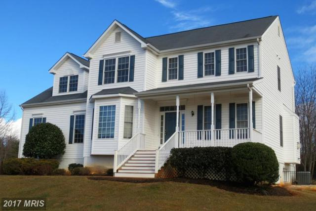 11413 Nether Court, Culpeper, VA 22701 (#CU9986137) :: Network Realty Group