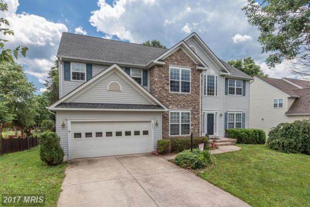 553 Windermere Drive, Culpeper, VA 22701 (#CU9986940) :: Network Realty Group