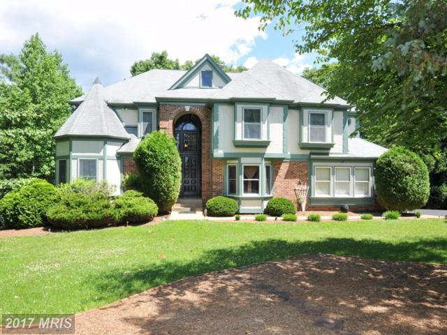 17319 N. Cambridge Way, Jeffersonton, VA 22724 (#CU9997890) :: Pearson Smith Realty
